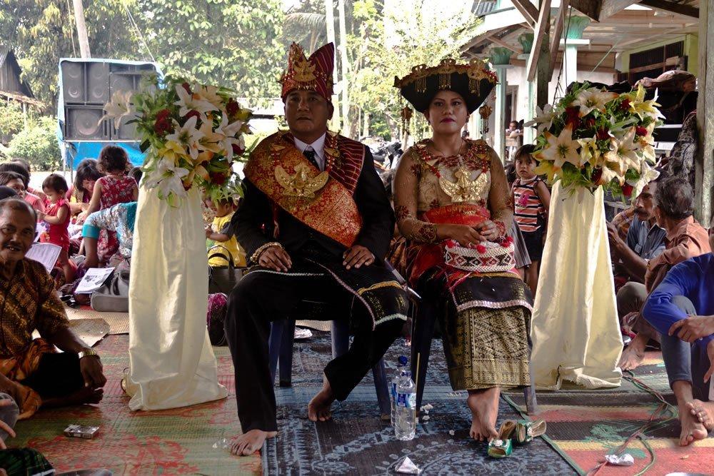 Sumatra Tangkahan Indonesia