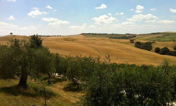 Agriturismo Podere Spedalone Toscana
