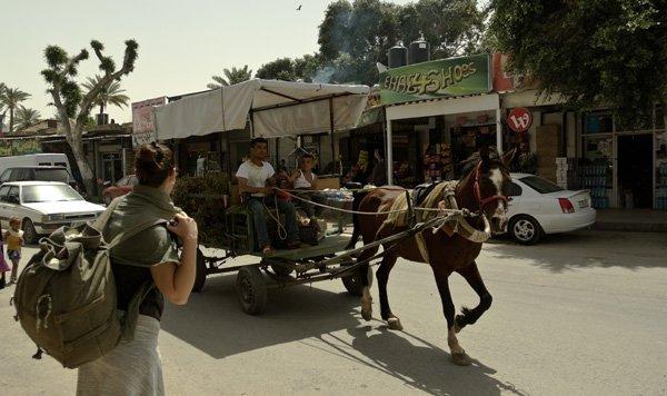 Itinerario in Medio Oriente: Tel Aviv e Palestina