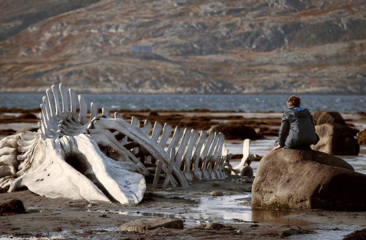 Leviathan Film Russia