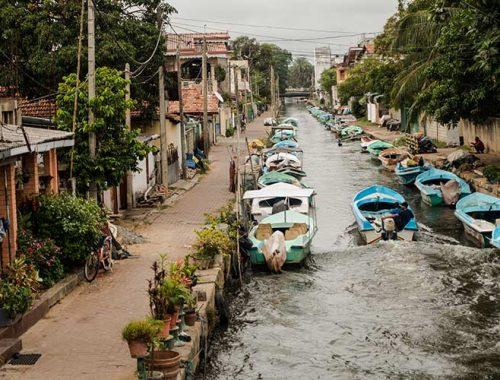 Cosa-Vedere-Negombo-Prima-Tappa-Viaggio-Sri-Lanka