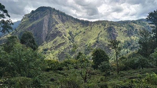 Come Organizzare Viaggio Sri Lanka Fai Da Te