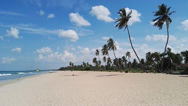 Trincomalee Sri Lanka Spiagge Deserte Balene