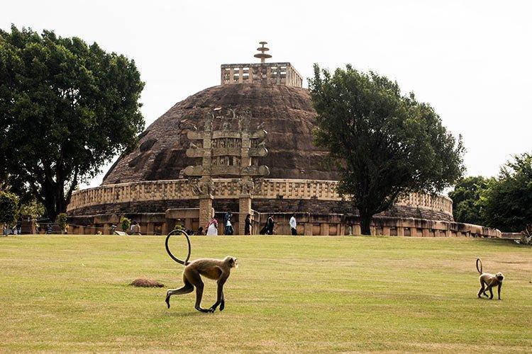 Cosa Vedere Sanchi Complesso Buddhista India