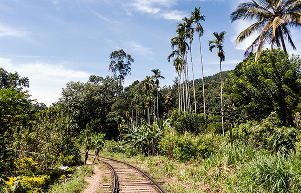 Viaggio Sri Lanka Itinerari Due Settimane