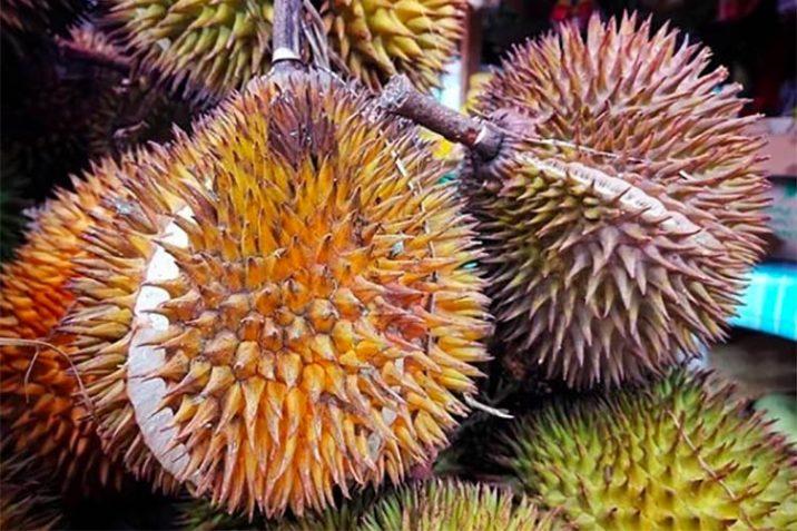 Cosa Durian Frutto Puzzolente Oriente