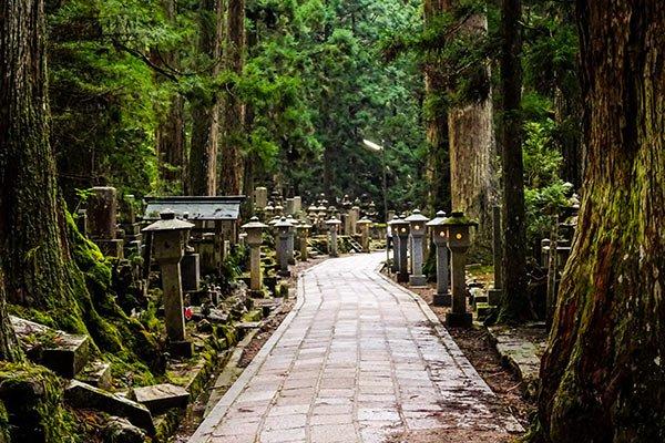 Guida Visita Monte Koyasan Giappone Cosa Vedere Fare