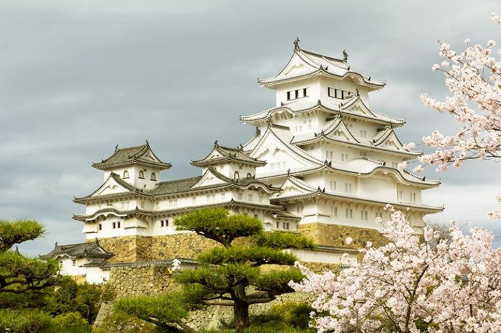 Visitare Castello Himeji Giappone Gita Osaka Kobe Kyoto