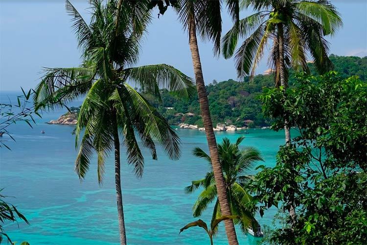Assicurazione Sanitaria Viaggio Thailandia Perche Quale Migliore