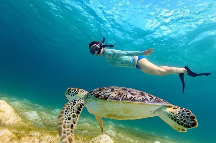 Dove Fare Snorkeling Diving Koh Samu Thailandia