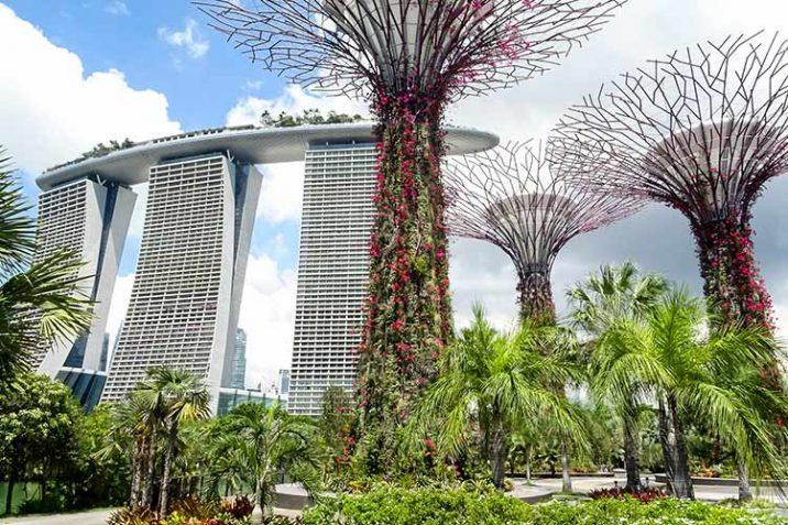 Abitanti Singapore Popolazione Quanti Sono Chi Sono