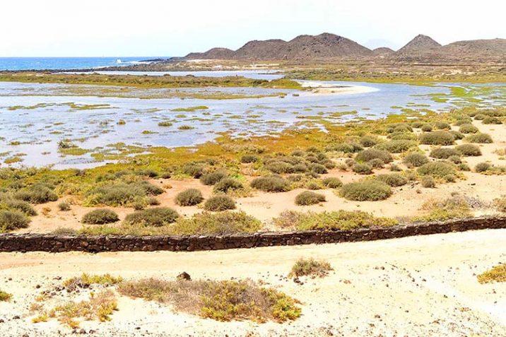 Guida Isla De Lobos Fuerteventura Cosa Vedere Fare Come Arrivare