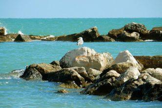 Campomarino Molise Borgo Mare Spiagge Piu Belle
