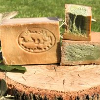 Shampoo Solido Migliori Prodotti Bio Ecologici Portare Viaggio