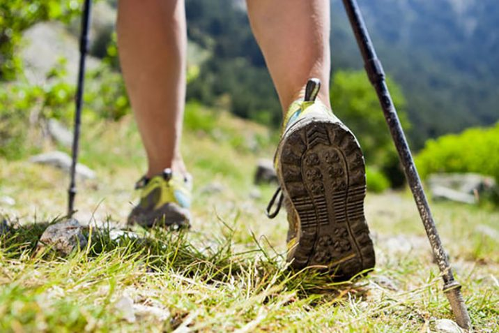 Migliori Bastoni Trekking Nordic Walking Viaggiatori Recensioni